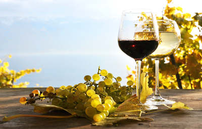 bando vitivinicolo